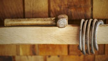 Still life of horseshoes and hammer