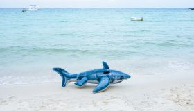 Inflatable Toy Shark On Shore At Beach