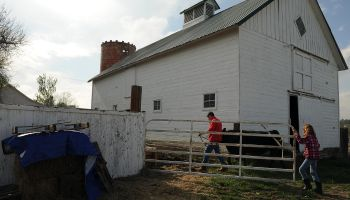 Moore Farm and city of Arvada partners with 4-H program.
