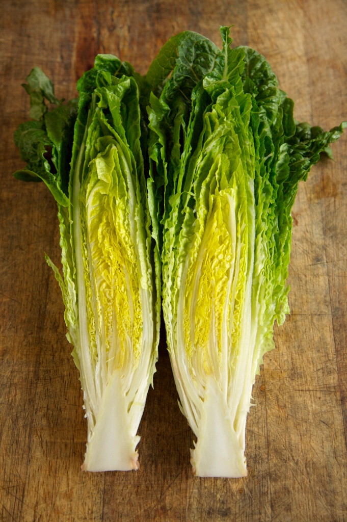 Halved Head of Romaine Lettuce