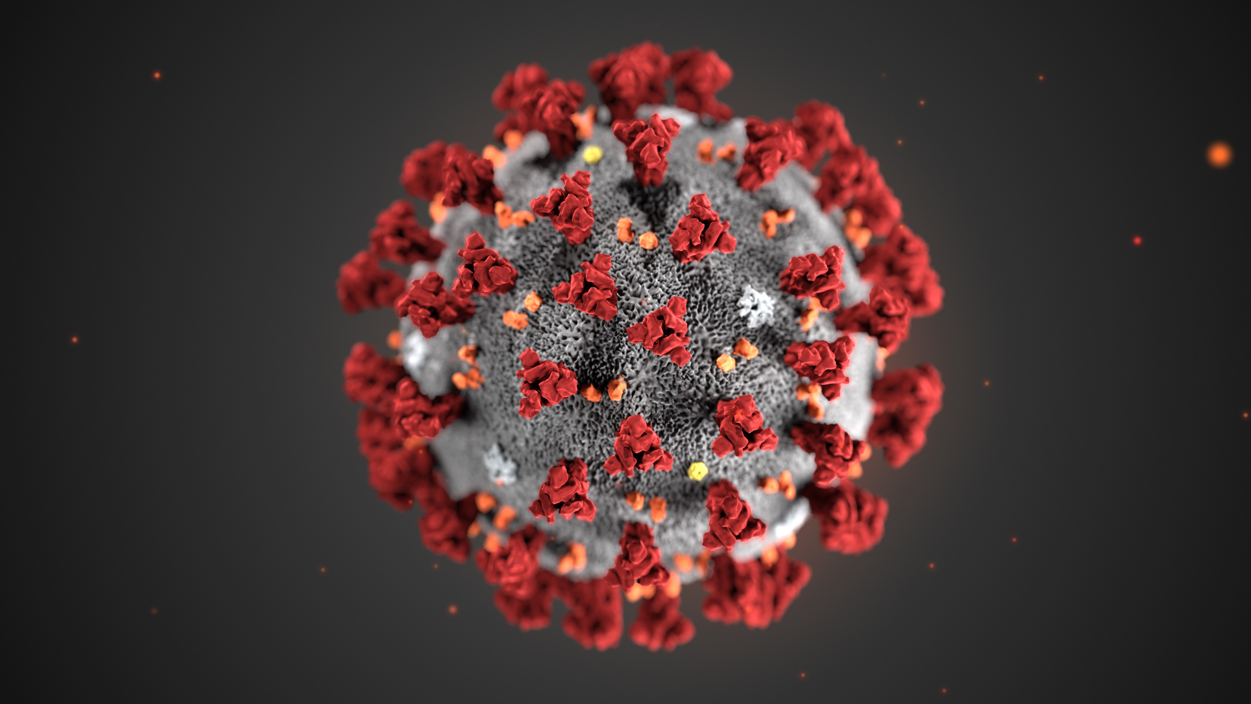 Illustration of 2019 Novel Coronavirus (2019-nCoV)